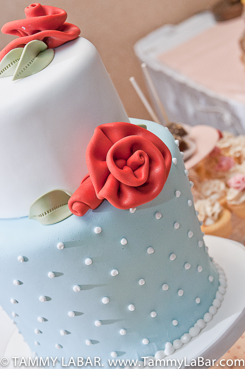 Cake decorating classes in detroit michigan