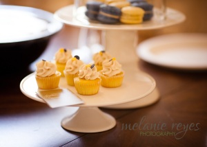 melanie reyes photography cupcakes